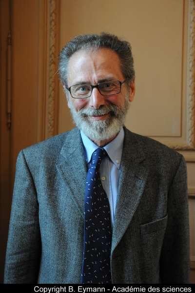 Yves Meyer to Receive the 2017 Abel Prize
